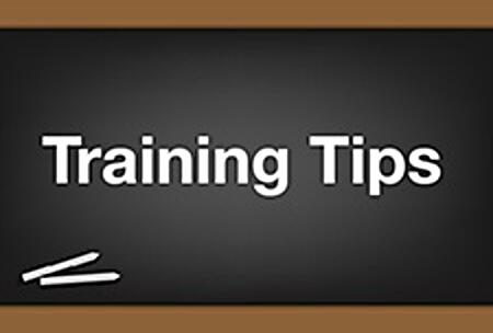 Training Tips_225x152